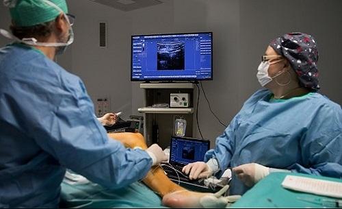 Visszérműtét - Dr Sepa